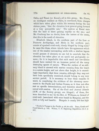 Image of Darwin-F275-1874-174