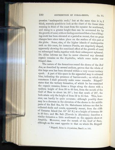 Image of Darwin-F275-1874-180