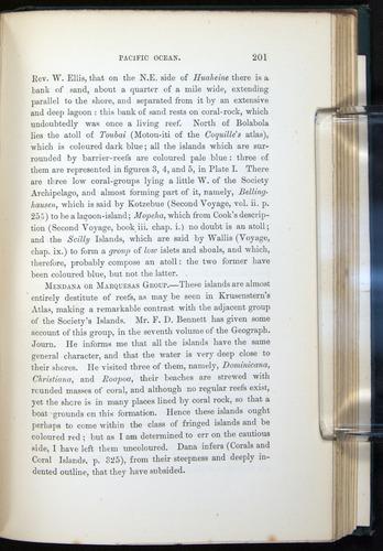 Image of Darwin-F275-1874-201