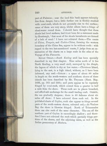 Image of Darwin-F275-1874-240