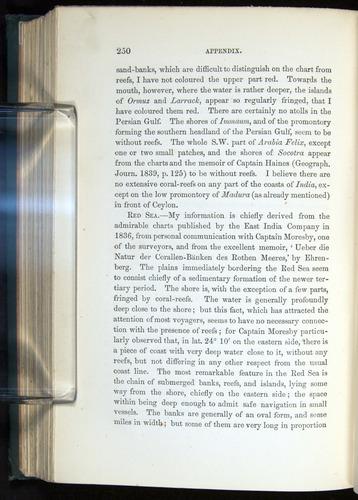 Image of Darwin-F275-1874-250