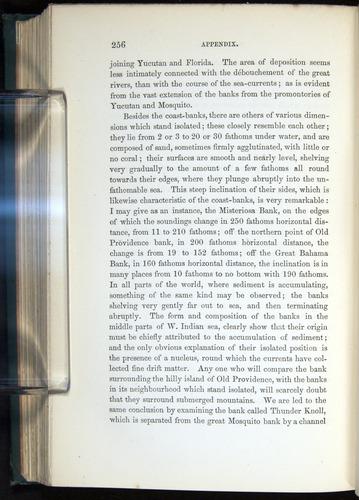 Image of Darwin-F275-1874-256