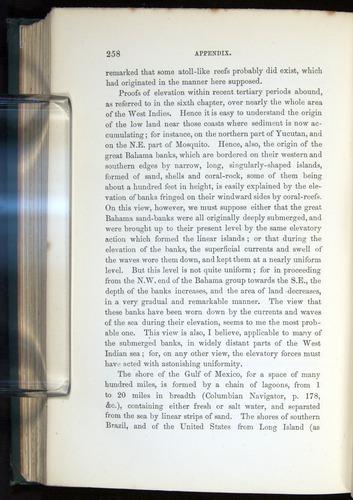 Image of Darwin-F275-1874-258
