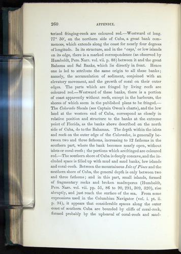 Image of Darwin-F275-1874-260