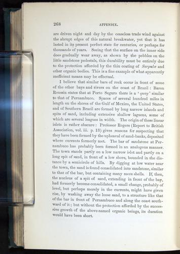 Image of Darwin-F275-1874-268