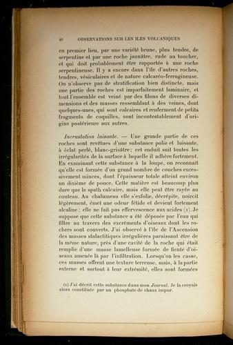 Image of Darwin-F310-1902-040