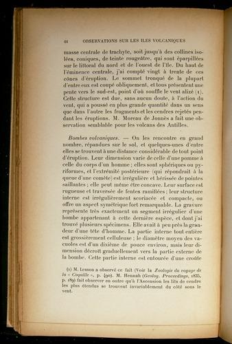Image of Darwin-F310-1902-044