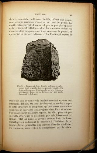 Image of Darwin-F310-1902-045