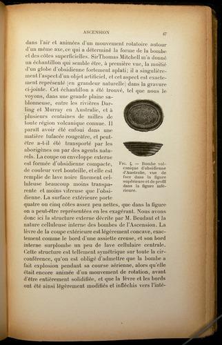 Image of Darwin-F310-1902-047