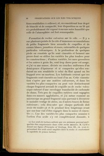 Image of Darwin-F310-1902-060