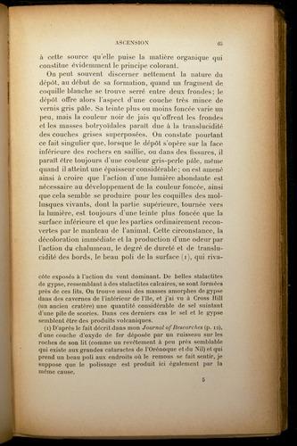 Image of Darwin-F310-1902-065