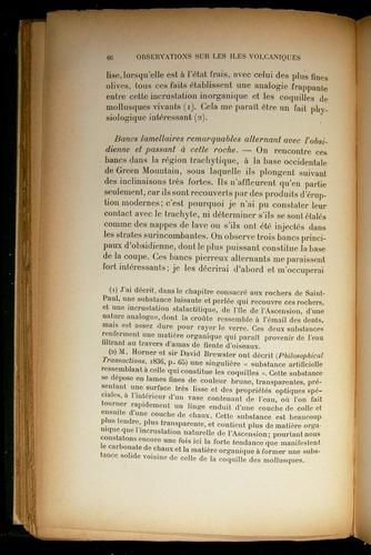 Image of Darwin-F310-1902-066