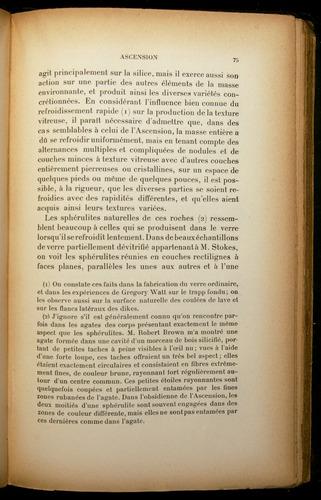 Image of Darwin-F310-1902-075