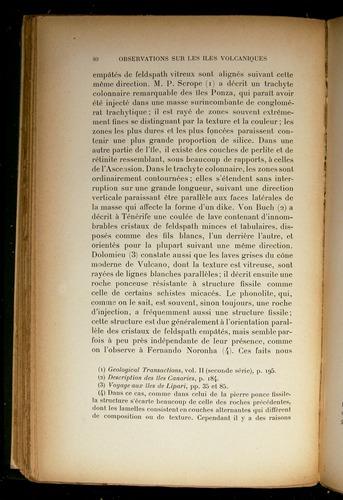 Image of Darwin-F310-1902-080