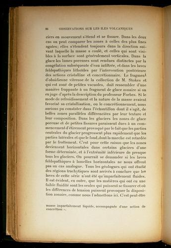 Image of Darwin-F310-1902-086