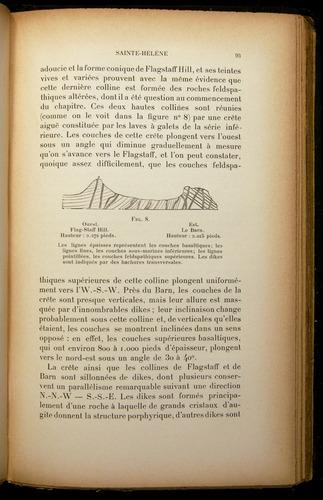 Image of Darwin-F310-1902-093