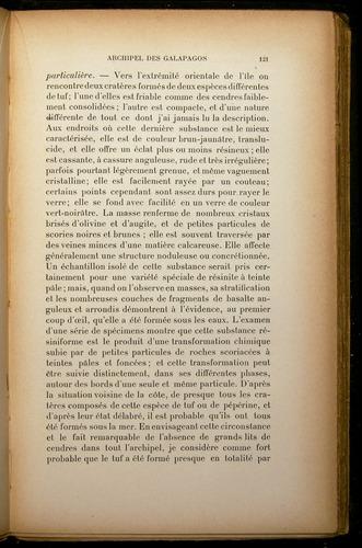 Image of Darwin-F310-1902-121