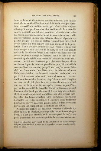 Image of Darwin-F310-1902-123