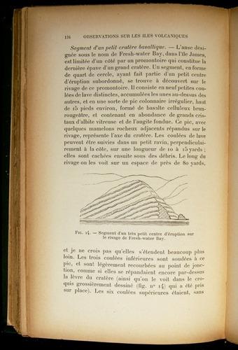 Image of Darwin-F310-1902-134