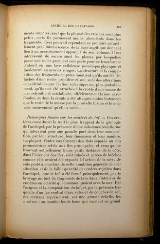 Image of Darwin-F310-1902-137