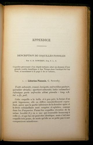 Image of Darwin-F310-1902-187