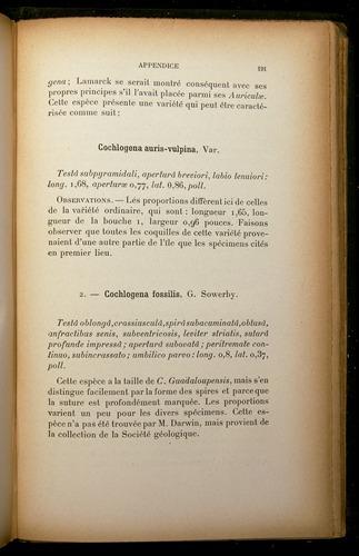 Image of Darwin-F310-1902-191