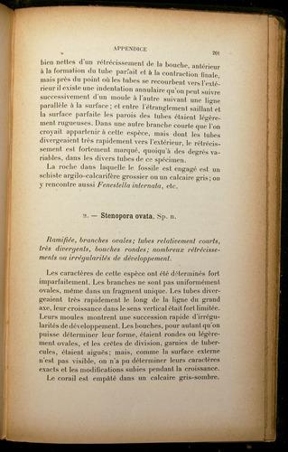 Image of Darwin-F310-1902-201