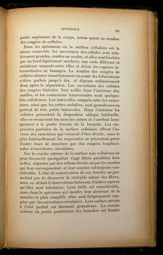Image of Darwin-F310-1902-203