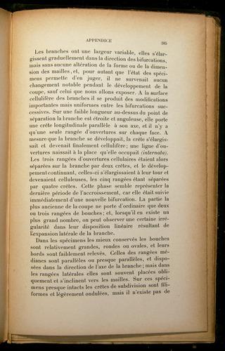 Image of Darwin-F310-1902-205