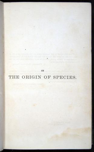 Image of Darwin-F377-1860-00000-tp1