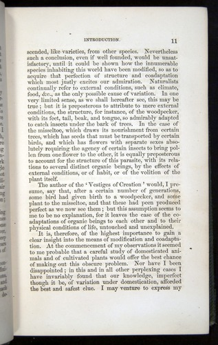 Image of Darwin-F377-1860-00011