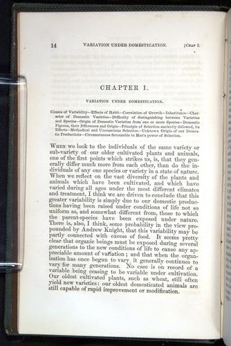 Image of Darwin-F377-1860-00014
