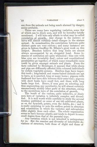 Image of Darwin-F377-1860-00018