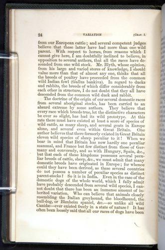 Image of Darwin-F377-1860-00024
