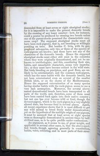 Image of Darwin-F377-1860-00028