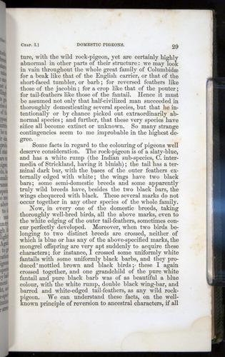 Image of Darwin-F377-1860-00029