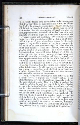 Image of Darwin-F377-1860-00030