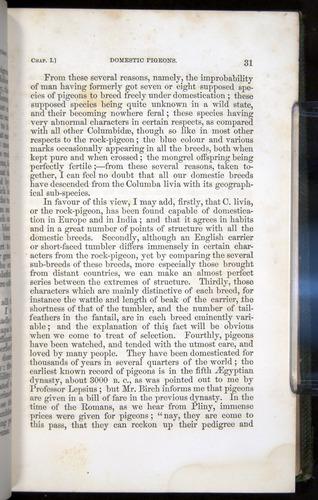 Image of Darwin-F377-1860-00031