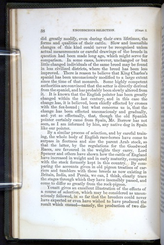 Image of Darwin-F377-1860-00038