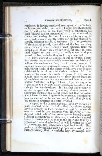 Image of Darwin-F377-1860-00040