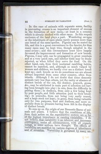 Image of Darwin-F377-1860-00044