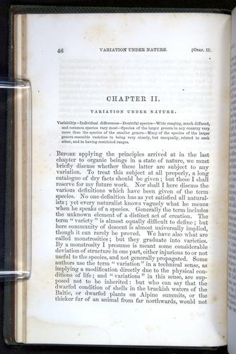 Image of Darwin-F377-1860-00046