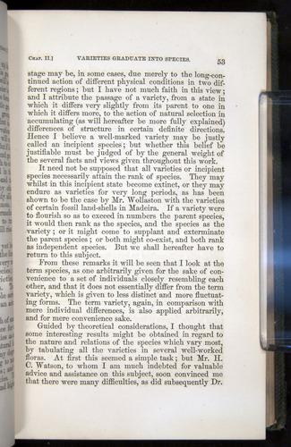 Image of Darwin-F377-1860-00053