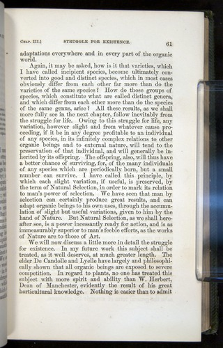 Image of Darwin-F377-1860-00061