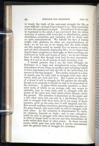 Image of Darwin-F377-1860-00062
