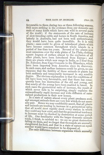 Image of Darwin-F377-1860-00064