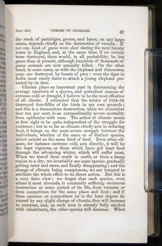 Image of Darwin-F377-1860-00067