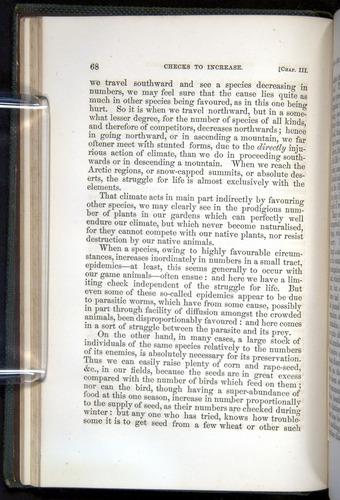 Image of Darwin-F377-1860-00068