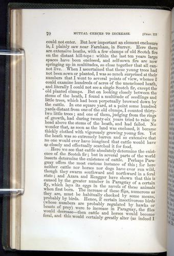 Image of Darwin-F377-1860-00070