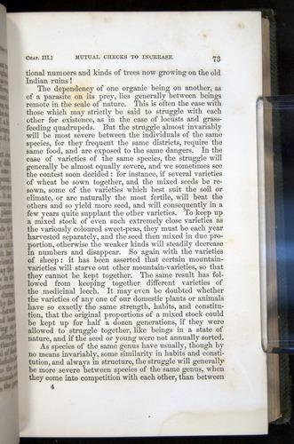 Image of Darwin-F377-1860-00073
